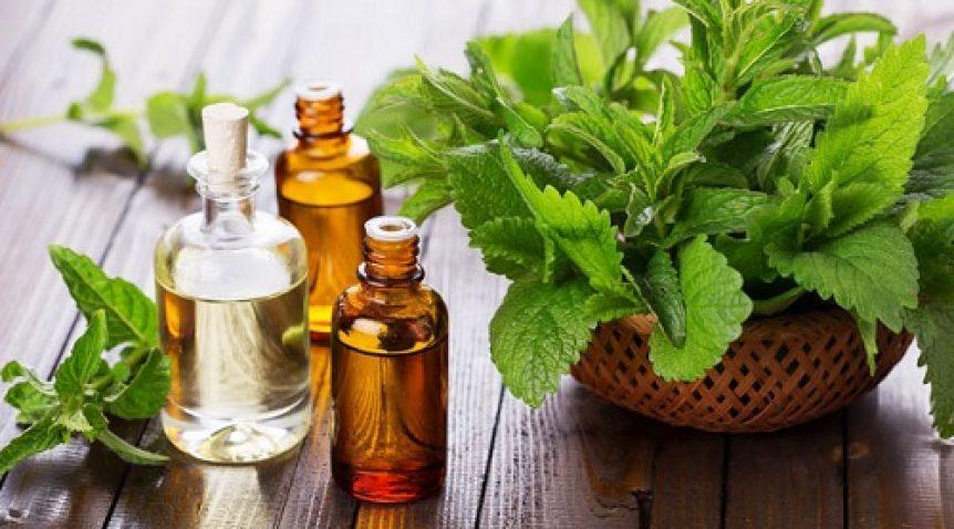 Xu hướng sử dụng tinh dầu thơm trong nhà hàng, khách sạn, quán karaoke, quán cafe, phòng trà