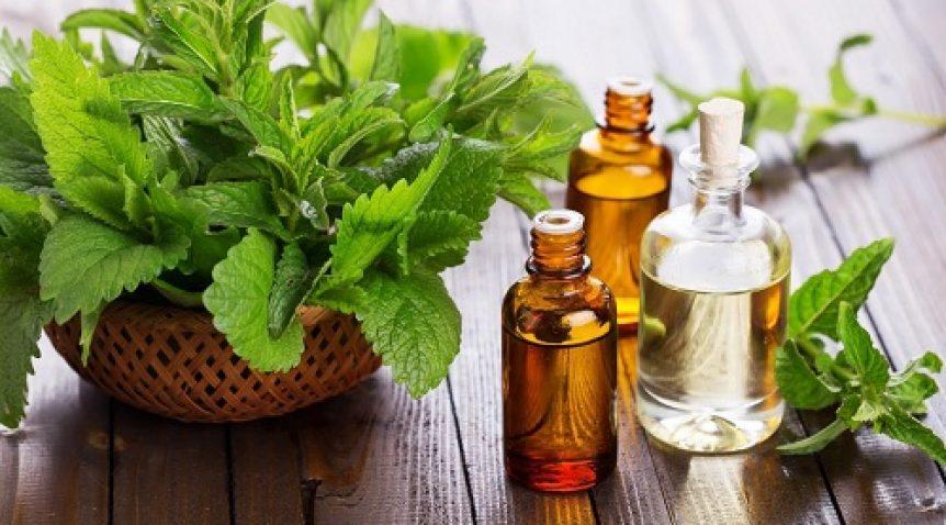 Tinh dầu thơm trị cảm cúm