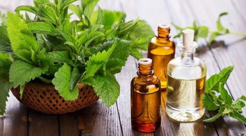 Top tinh dầu thơm đa năng và hiệu quả – Phần 2