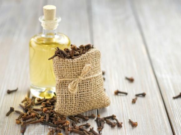 Hé lộ tác dụng của tinh dầu đinh hương