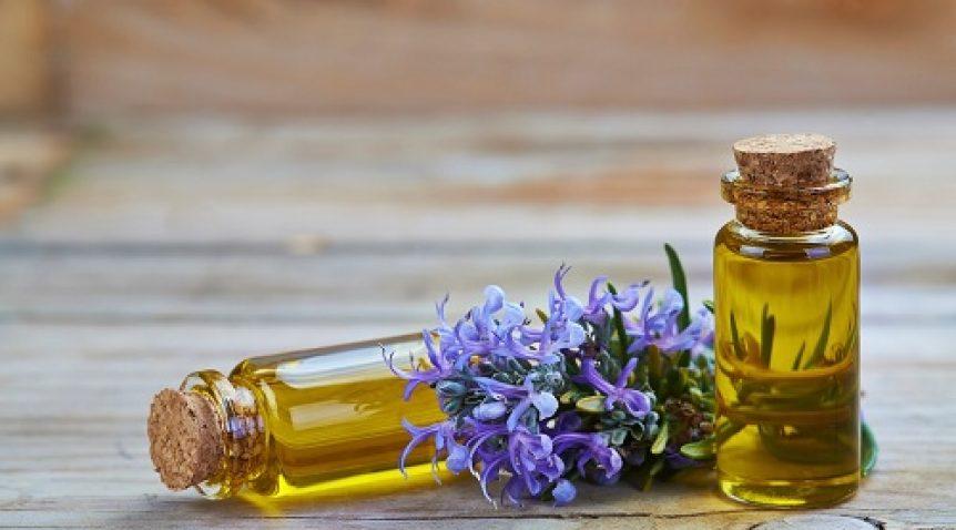 Tìm hiểu tác dụng của tinh dầu hương thảo