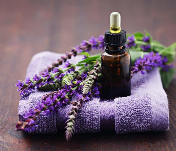 Kết quả hình ảnh cho tinh dầu lavender