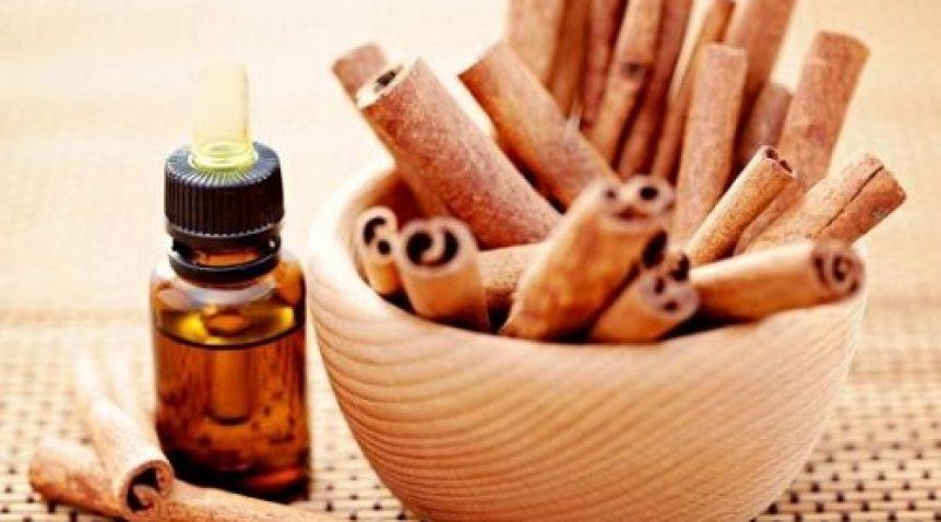 Tuyệt chiêu dùng tinh dầu quế trị mụn đơn giản tại nhà