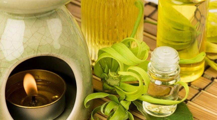 Thêm khỏe mạnh với hương thơm từ tinh dầu thiên nhiên