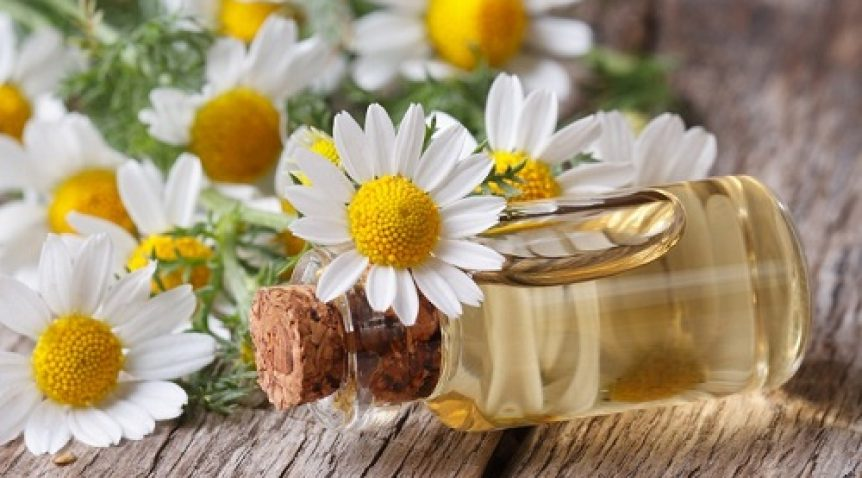 5 Loại tinh dầu thiên nhiên bà bầu nên sử dụng