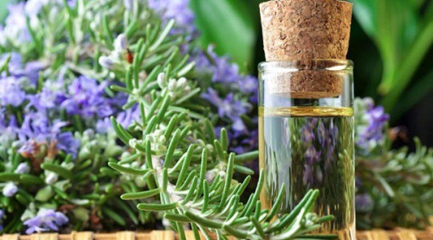 7 Loại tinh dầu thiên nhiên tốt cho sức khỏe