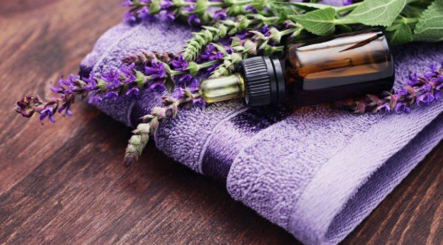 10 loại tinh dầu tự nhiên chống muỗi đốt