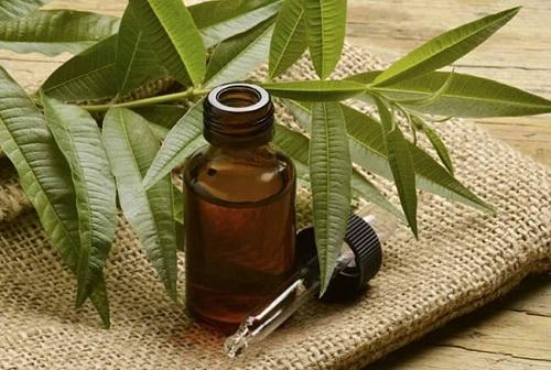 Tinh dầu hoắc hương