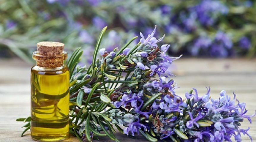 Tinh dầu thơm và cách lựa chọn phù hợp phong thủy