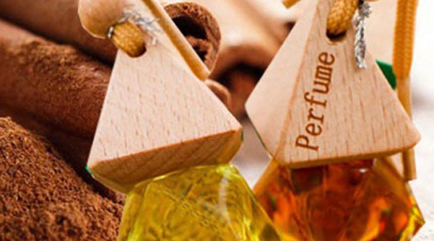 Tổng hợp những loại tinh dầu khử mùi oto