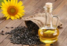 Tìm hiểu công dụng của tinh dầu hướng dương
