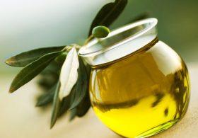 Tìm hiểu công dụng của tinh dầu Jojoba