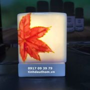 Đèn tinh dầu vẽ lá phong đỏ