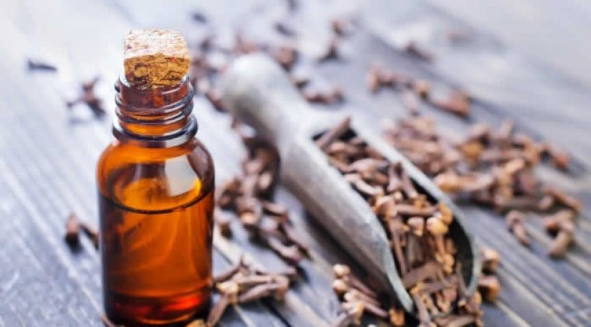 Tác dụng của tinh dầu đinh hương là gì?