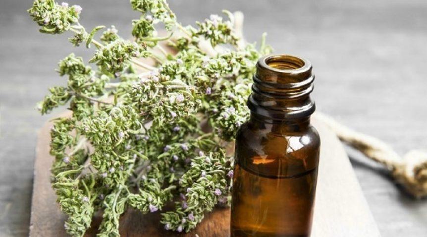 Tác dụng của tinh dầu xạ hương là gì?
